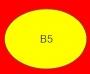 ETICHETTA B05 dim 40x30 mm